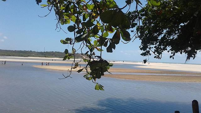 Linda vista do rio e do mar