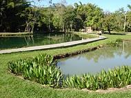 Vista da Lagoa do Pirapitinga - belo lugar