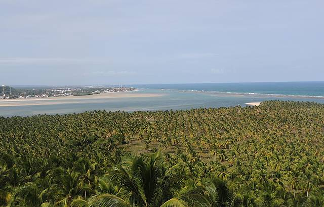 Mirante - Praia do Gunga