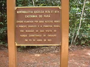 Zoo de Carajás: Visitas ilustres plantaram árvores<br>
