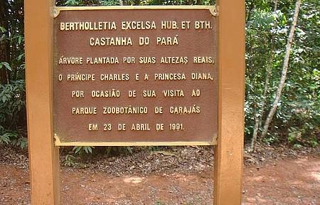 Zoo de Carajás - Visitas ilustres plantaram árvores