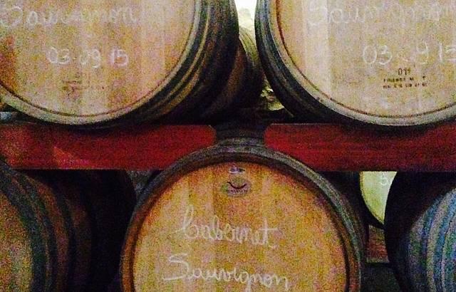 Nas barricas, vinhos ganham aroma e sabor