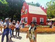 Casa da Tulipa