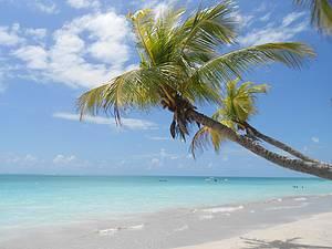 Cenário perfeito: O Caribe é aqui! -