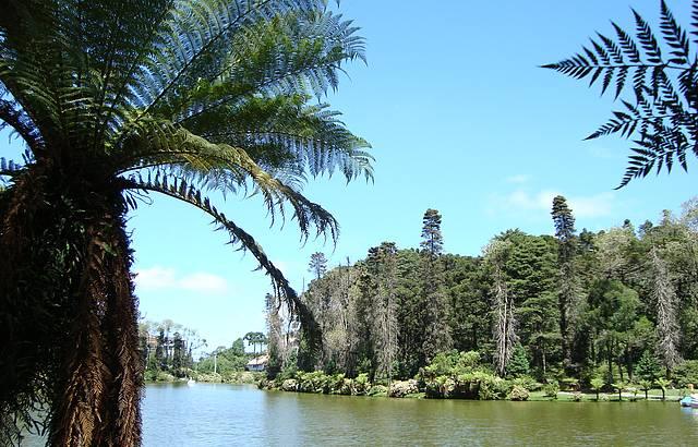 Bela Vista do Lago Negro