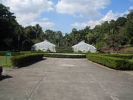 Tarde de inverno no Jardim Botânico