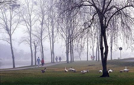Nem as manhãs frias desanimam a turma da caminhada!