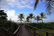 Vista das passarelas de acesso à praia.. um convite irresistível !