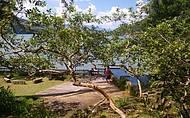 Alambique Maria Izabel e a vista para a baía de Paraty