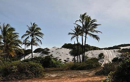 Massarandupió - Praia de naturismo é protegida por dunas branquinhas