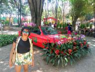 Carro das Flores