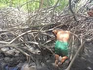 Guia Sorriso capturando caranguejo no mangue.