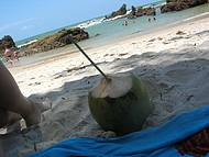 Relaxando na sombra e água de coco fresca