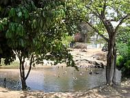 Praia abaixo da ponte