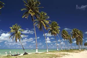 Circulando pelo Litoral Norte de Alagoas: Cores se misturam e formam um belo mosaico -