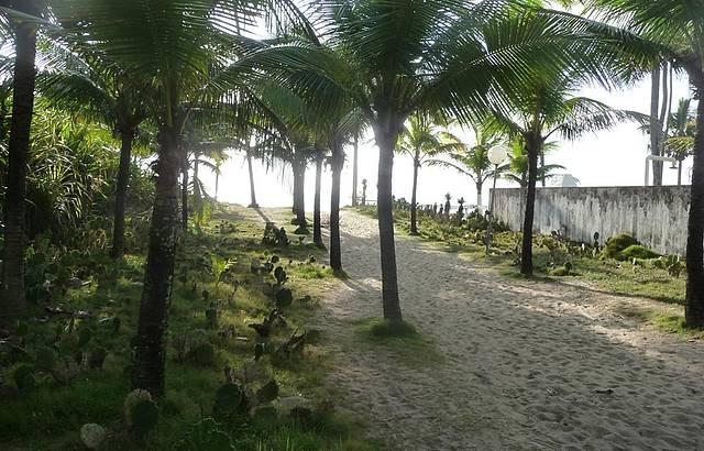 A caminho do paraíso!