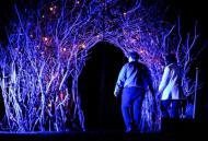 Na Festa das Luzes, show exalta a natureza
