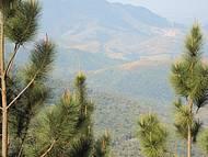 Vista do mirante em Sto. Antônio do Pinhal