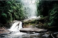 Trilhas no parque levam a quedas como a do Rio Paraibuna
