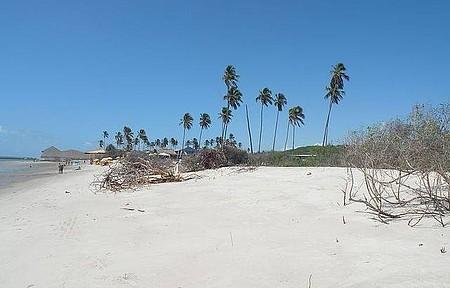 Praia do Saco - Mirante!