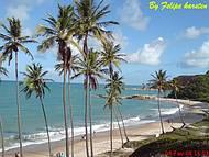Praia de Tabatinga. Um lindo passeio.