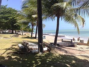 Uma bela vista da praia.