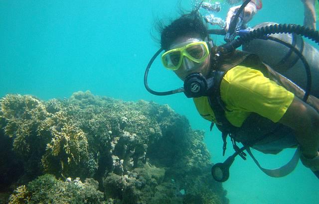 Mergulho em Paripueira