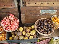 Frutas Típicas