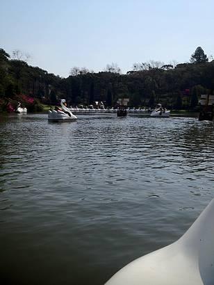 Passeio com barquinhos Cisne Branco.