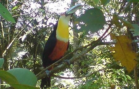 Zoo Botânico - Manhã ensolarada em Brusque