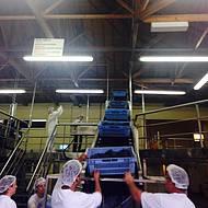 Início do processo de produção
