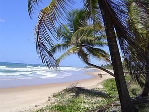 Praias do distrito de Oliven�a est�o entre as mais bonitas e badaladas - Foto: Setur Ilh�us