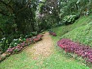 É um Belo Lugar para Apreciar a Beleza da Natureza.