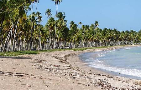 Praia do Patacho - Visual ao Entardecer