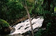 Fotos de uma cachoeira em Delfim Moreira