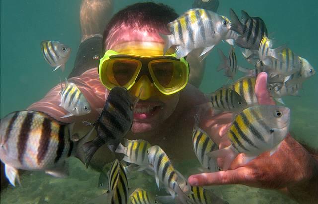 Megulhando no recife!
