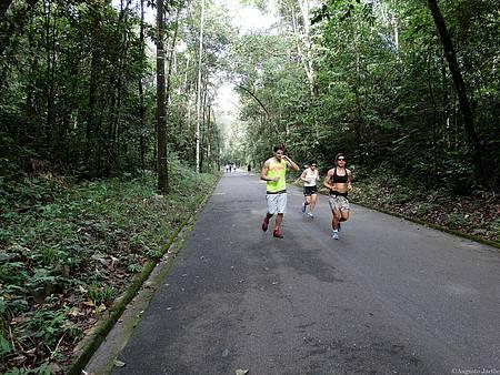 Parque do Utinga - Cenário convida a corridas e atividades físicas