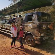 Safari é feito em caminhões adaptados