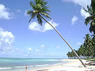 Praia paradisíaca, imperdível.