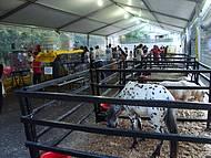 Expo São Roque, Mini Fazenda