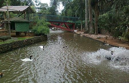 Zoológico Municipal - Maior zoo de SC