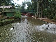Maior zoo de SC