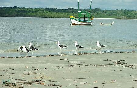 Ilha de Surperagui - A ilha