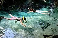 Águas transparentes e piraputangas