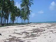 Praia Deserta... Perfeita!