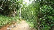 Estrada Paraty- Cunha