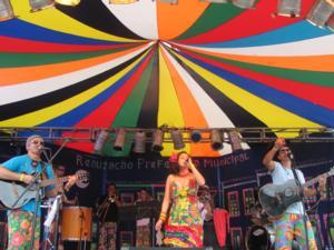 Carnaval: Eventos de rua movimentam a cidade<br>