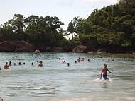 A praia mais bonita de Ubatuba..