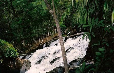 Cachoeira Ninho da Águia - Delfim