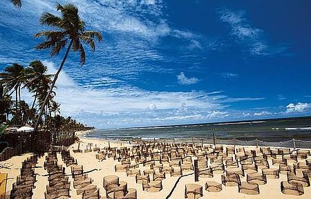Praia do Forte - Desova de tartarugas é um dos principais eventos